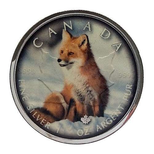 """Canadá, 5 $ Plata ( 1OZ 9999 mls. )Maplae Serie """"On The Trails of Wildlife"""": Zorro."""